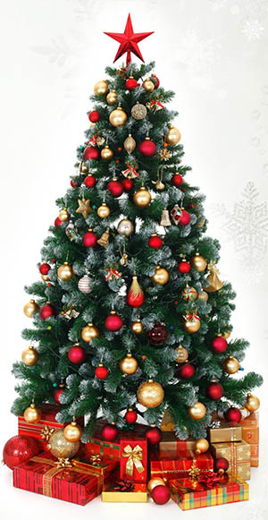 christmasmeaning