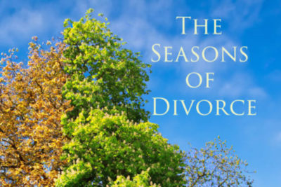 The Seasons of Divorce Book Cover